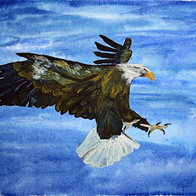 bald eagle by Paul Robin Andrews - Painting All Painting ( bird, eagle, water colour, art, canvas )