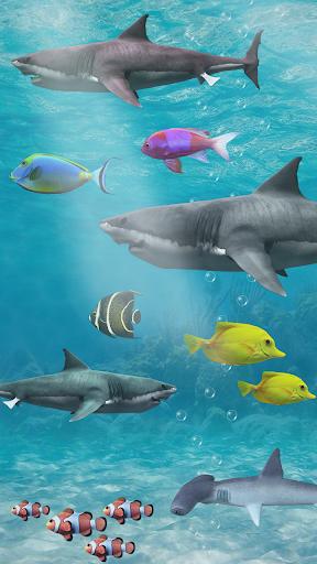 shark aquarium live wallpaper - photo #12