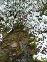 Photo: Oh good.  Snow!