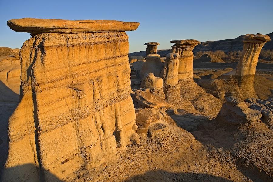 Stone mushrooms by Barna Tanko - Landscapes Mountains & Hills ( alberta, sunset, hoodoos, badlands )