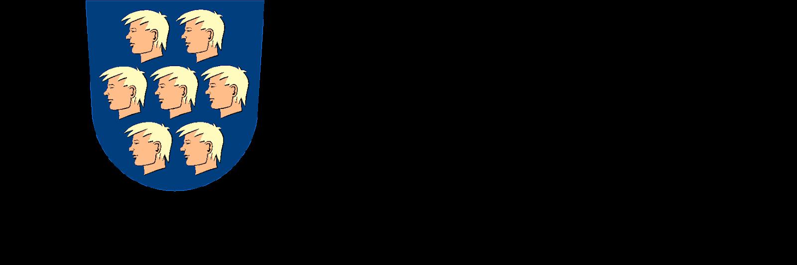 nurmijarvi_4v_logo