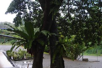 Photo: Setiap hiasan yang direka cuba menghasilkan suasana tenang dan nyaman di Hidayah.