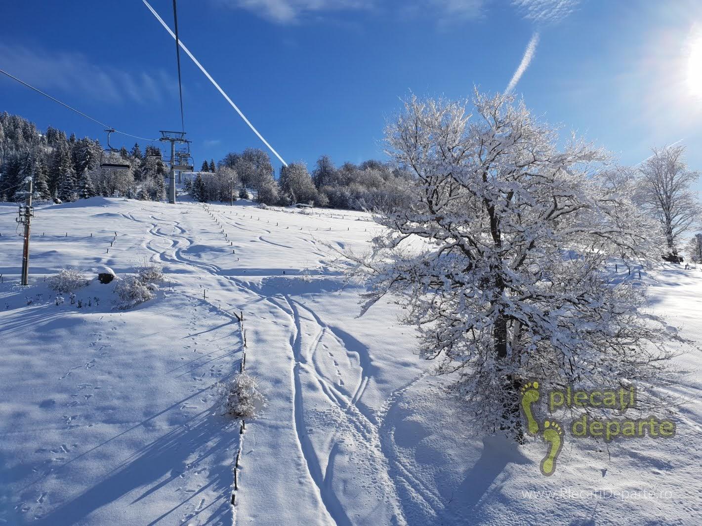 Zapada proaspata pe o posibila partie de ski, pe sub telescaunul nou, care pleaca de la Hotel Rusu, din Parang, in 2019