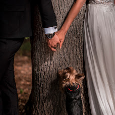 Fotograful de nuntă Tony Hampel (TonyHampel). Fotografia din 01.10.2018