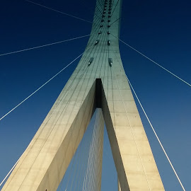 Modern suspended bridge  by Sandeep Karyakarte - Buildings & Architecture Architectural Detail ( modern, cables, seoul, bridge, suspended )
