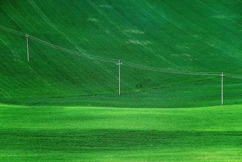quasiniente verde di aldopaolo