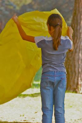 Il giallo di un picnic di mozart