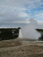 Photo: Of course, we had to first see Old Faithful