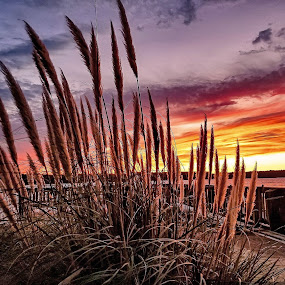 Serenity ~ by Gina Jordan Morrison - Novices Only Landscapes (  )