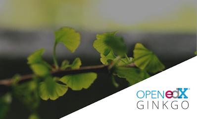 Figura 3 - Open edX Ginkgo