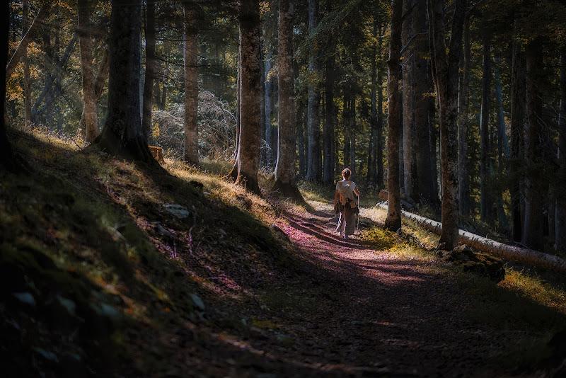 Tra i boschi del Cansiglio! di Giovi18