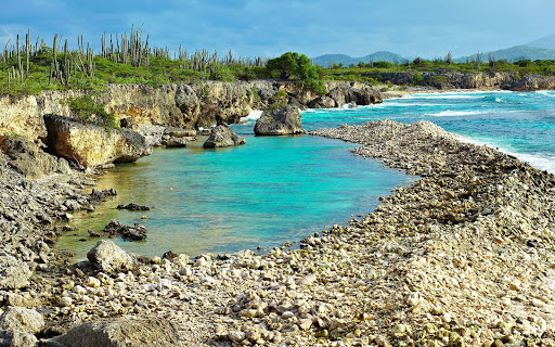 bonaire-wild-coastline.jpg - A stretch of wild, pristine coastline in Bonaire.