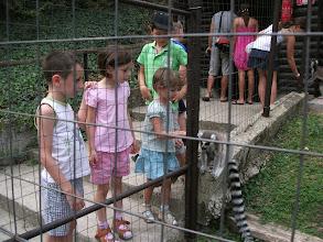 Photo: Veszprémi állatkert