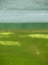 Photo: Bright colours of Crna Jezera (Black Lake) in Durmitor NP