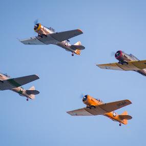 War Birds over Tulsa by John Spain - Transportation Airplanes