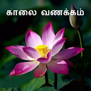 Morning & Goodnight in Tamil - náhled