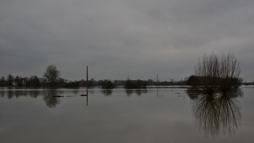 Hoog water van de Rijn bij Wageningen in januari 2018