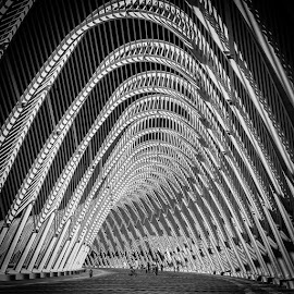 Bicycles in the insides of the metal spine by Costas Gountanas - Buildings & Architecture Architectural Detail ( bicycles, monochrome, inside, black and white collection, architecture, light, people, shadows, calatrava )