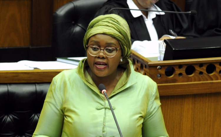 Afriforum and Solidarity are challenging tourism minister Mmamoloko Kubayi-Ngubane's use of BBBEE as a requirement for tourism businesses to qualify for relief.
