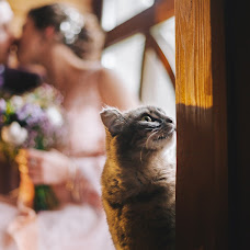 Wedding photographer Darya Alekseeva (daria-k-a). Photo of 17.02.2018