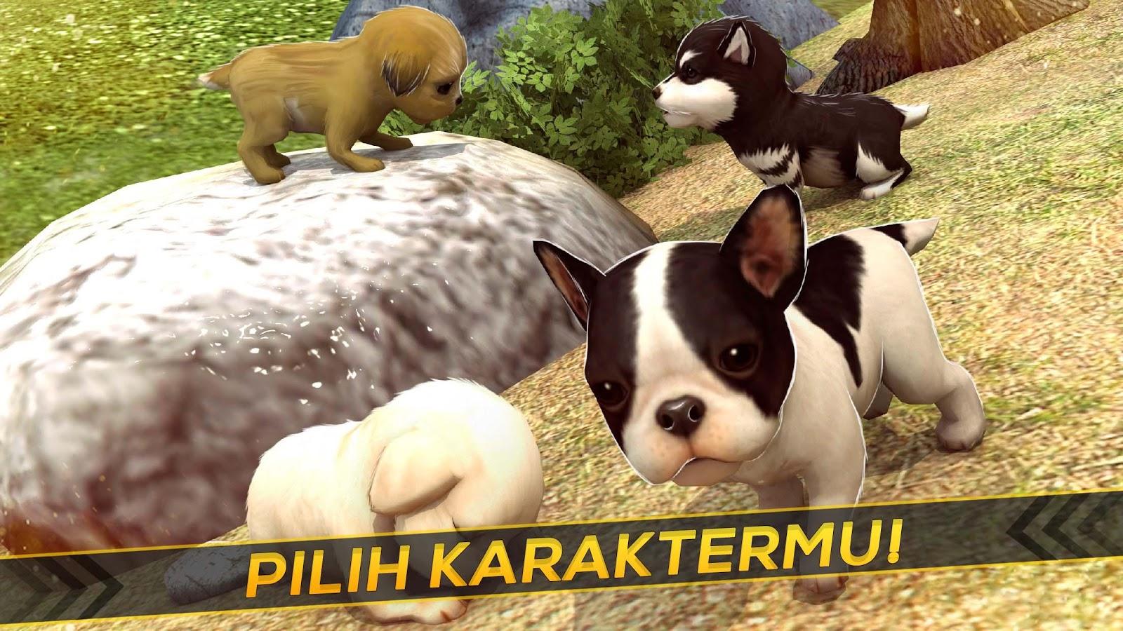 Anak Anjing Berjalan Di Taman Apl Android Di Google Play