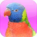 Animal Sounds with Photos icon