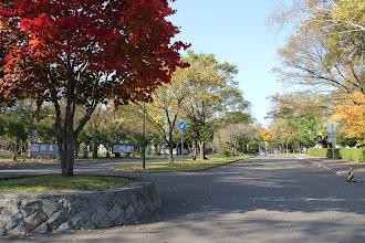Photo: クラーク会館前の道路
