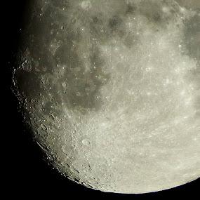 Moon  by Pat Regan - Uncategorized All Uncategorized (  )