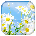 Spring Live Wallpaper icon