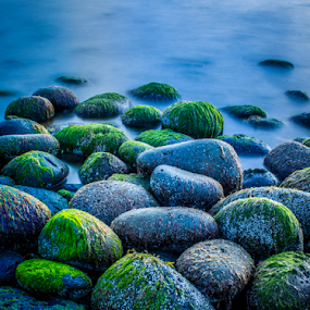 Green Rocks by Kristvin Guðmundsson - Nature Up Close Rock & Stone ( canon, iceland, blue, kristvin, green, weed, 60d, tide, sea, long exposure, longexposure, rocks,  )