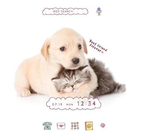 Cute Animal Wallpaper Puppy and Kitten Theme 1.0.0 Windows u7528 1