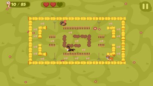 Turkey Run - Farm Maze