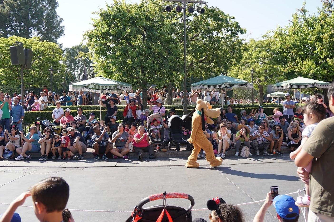 Pluto Disneyland