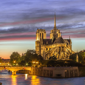 Notre Dame Cathedral, Paris by Angela Higgins - Buildings & Architecture Places of Worship (  )
