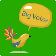 Big Voize-Lite
