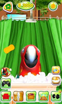 Talking Parrot - screenshot