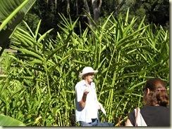Botanic Gardens Walk 035