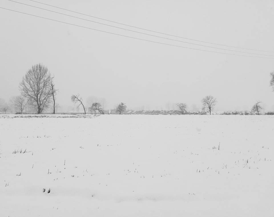 -Winter- di Alex11