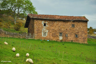 Photo: borda