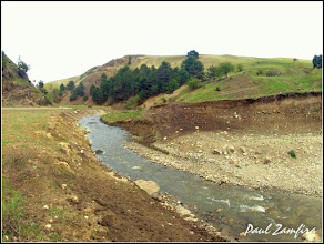 Photo: Cheile Turului - zona de defileu din aval - Paraul Racilor -  (2012.04.20)