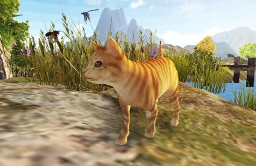 野生貓科動物生存