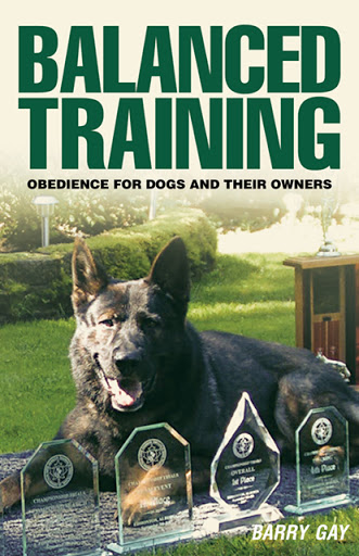 Balanced Training cover