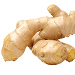 Benefits of Ginger Icon