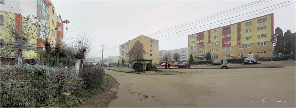 Photo: Str. Lianelor - 2016.11.24