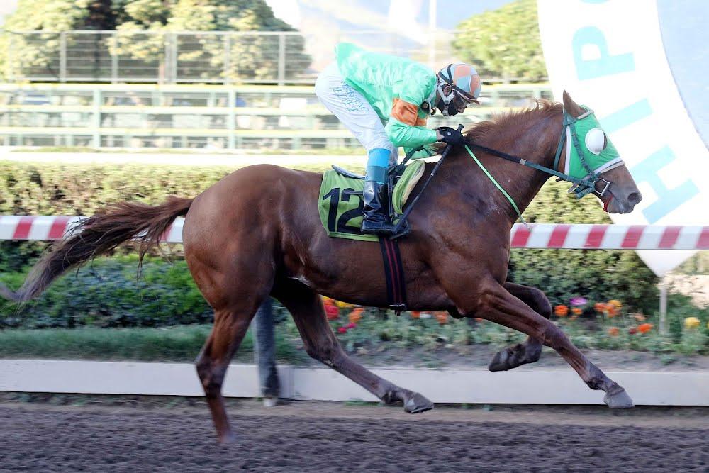 Victory David (Line of David) se lleva  Handicap (1200m-Arena-HCH). - Staff ElTurf.com
