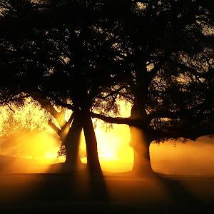 Part IV Miscellaneos pix (best sunrise shots) 077.jpg