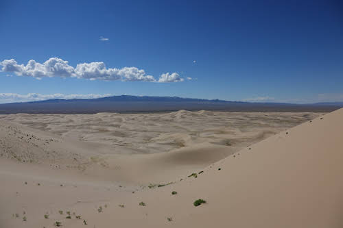 View of the Khongoryn Els Sand Dunes