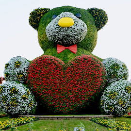 Flowery Panda by Nadeem M Siddiqui - Flowers Flower Gardens