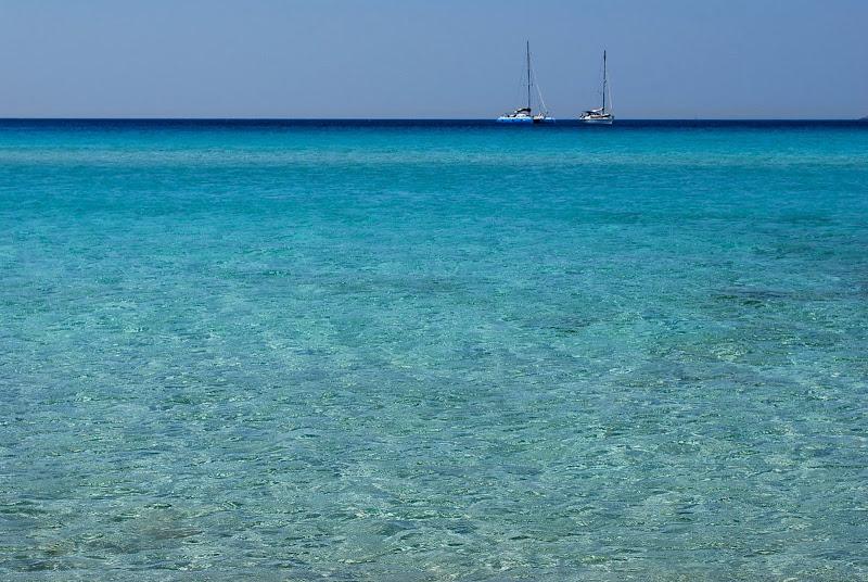 Barche di Alessandra Alba
