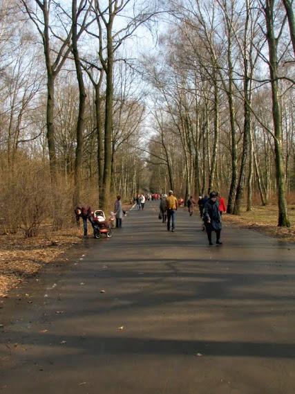 Экотерапия для поддержки душевного равновесия. ecotherapy.ru